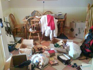 Disorganised Chaos. So just \'chaos\', really.