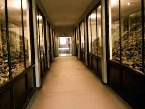 Corridor lined with shoes